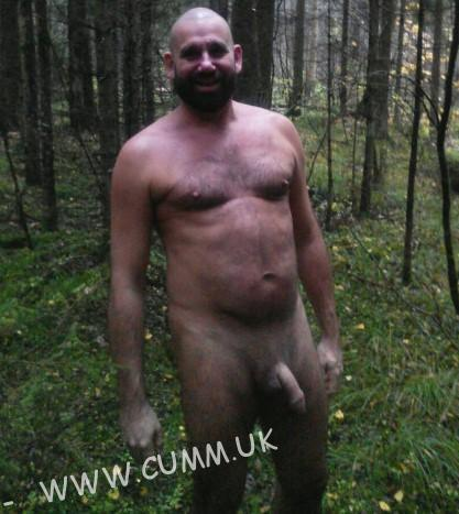 hung in the woods