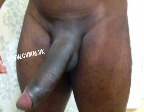 Great British Cocks