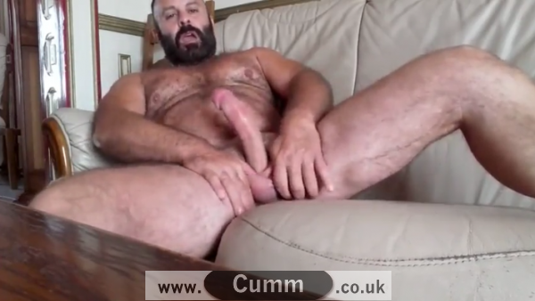 My Big Daddy Bear Cock