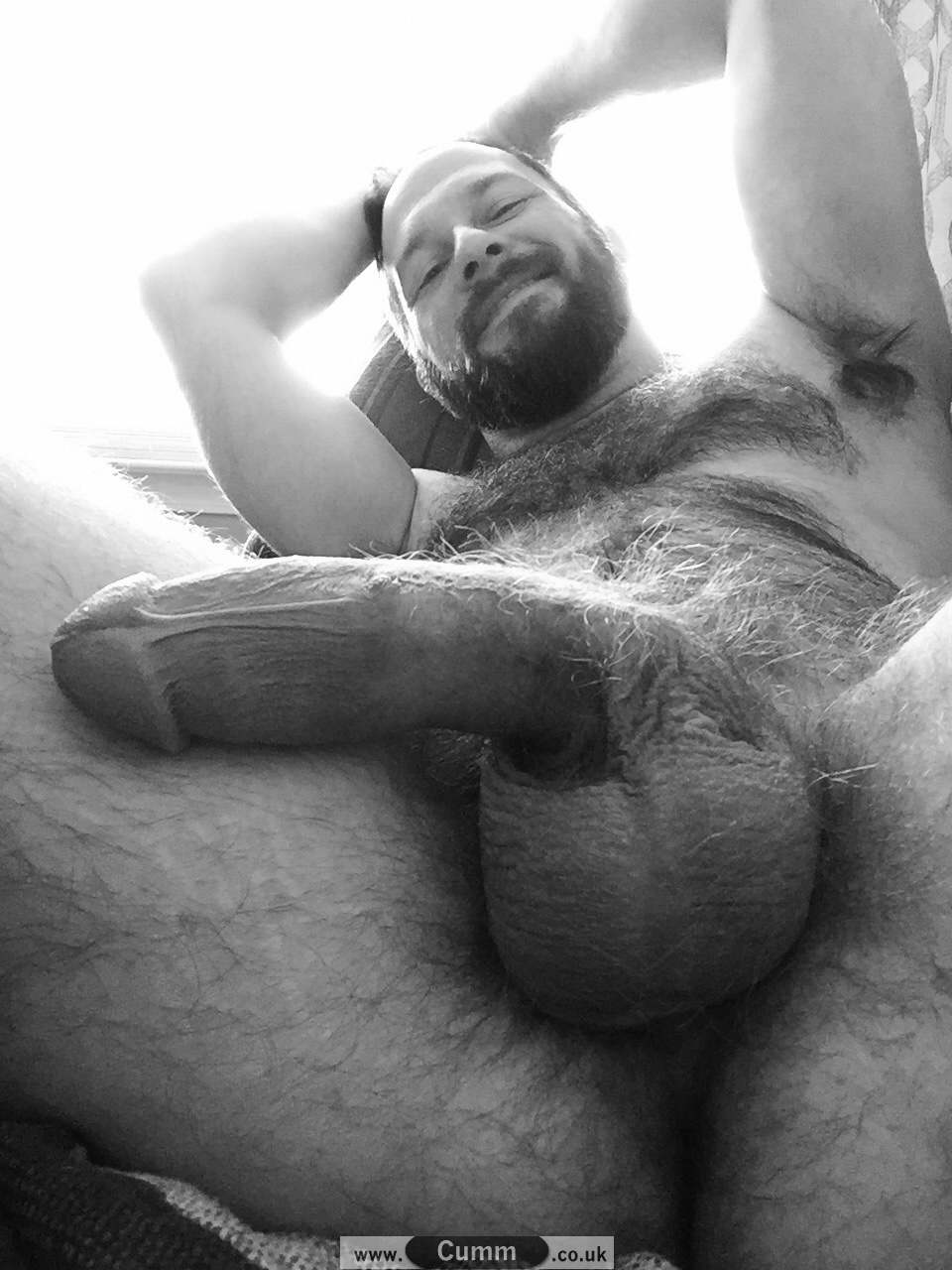vintage hairy man big penis