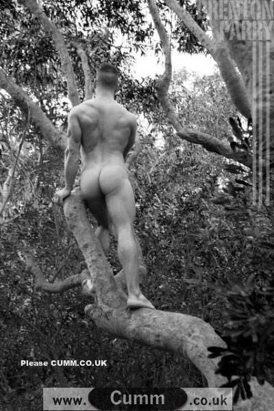 vintage man in tree naked arse