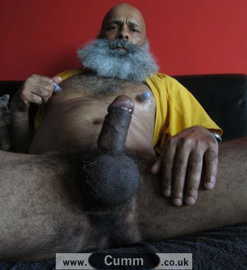 daddy bear of india shows big erection