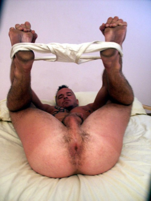 Big-Bare-Beefy-British-Bull-Bears-randy-rosebud