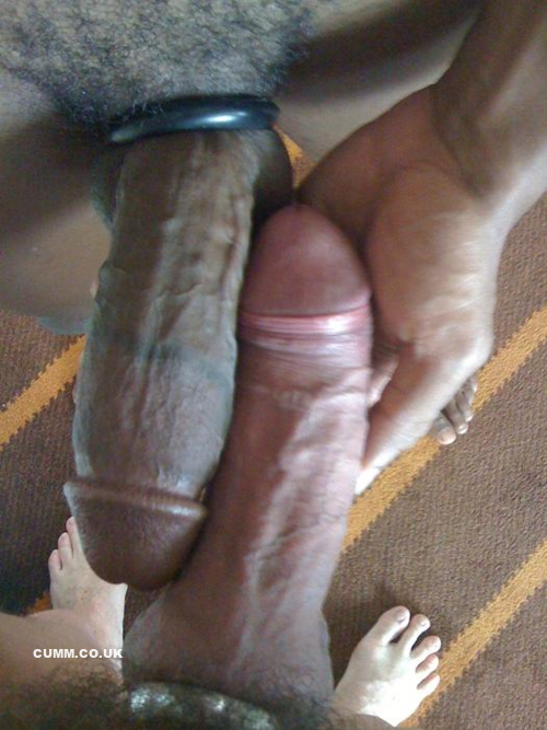 cockring teilbar big dick videos