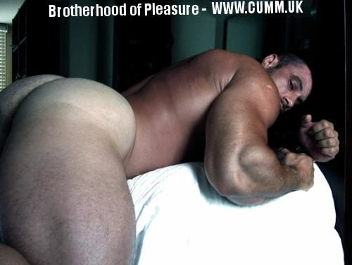 arse-daddy-spread-my-muscular-cheeks